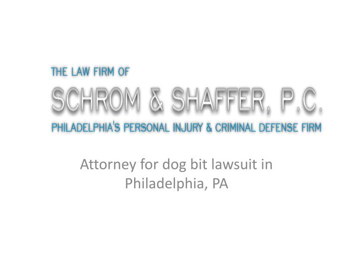 attorney for dog bit lawsuit in philadelphia pa n.