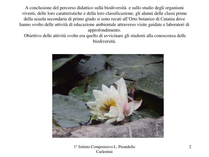 A conclusione del percorso didattico sulla biodiversità  e sullo studio degli organismi viventi, de...