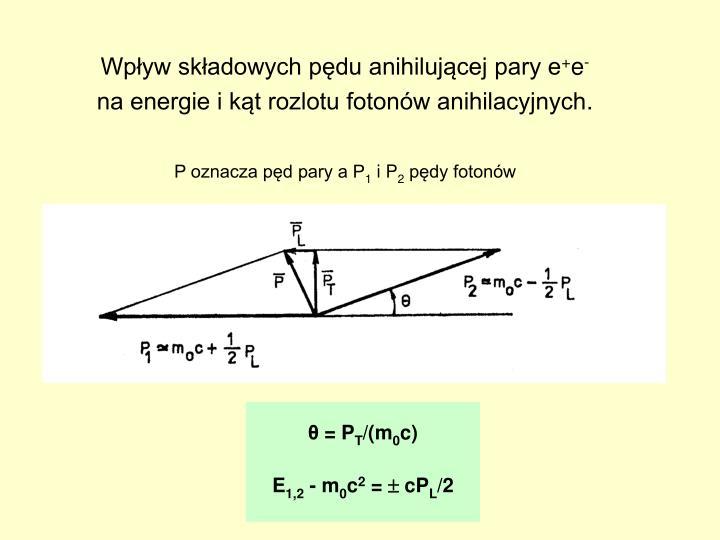 Wpływ składowych pędu anihilującej pary e