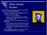 other issues access