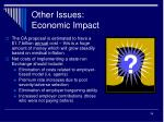 other issues economic impact