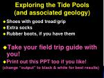 exploring the tide pools and associated geology