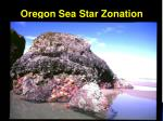 oregon sea star zonation