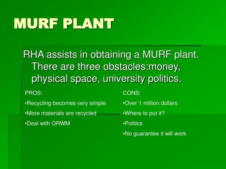 MURF PLANT