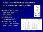 functional differences between face and object recognition