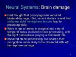 neural systems brain damage