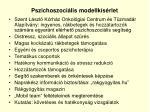pszichoszoci lis modellk s rlet