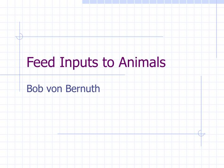 feed inputs to animals n.