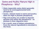 swine and poultry manure high in phosphorus why