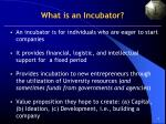 what is an incubator
