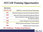 nccam training opportunities