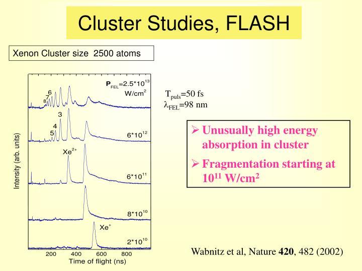 Cluster Studies, FLASH