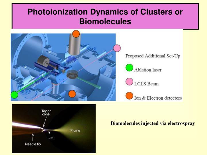 Photoionization Dynamics of Clusters or Biomolecules