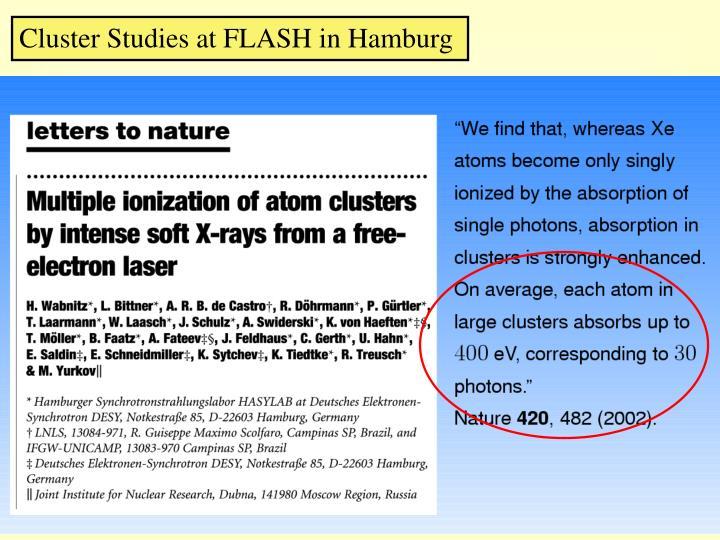 Cluster Studies at FLASH in Hamburg