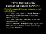 why is there an issue facts about hunger poverty1