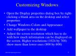 customizing windows