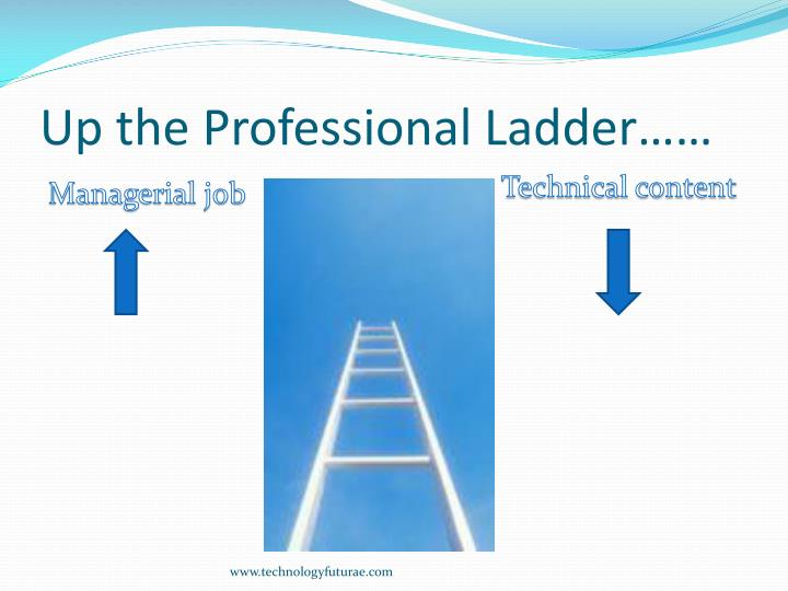 Up the Professional Ladder……