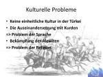 kulturelle probleme