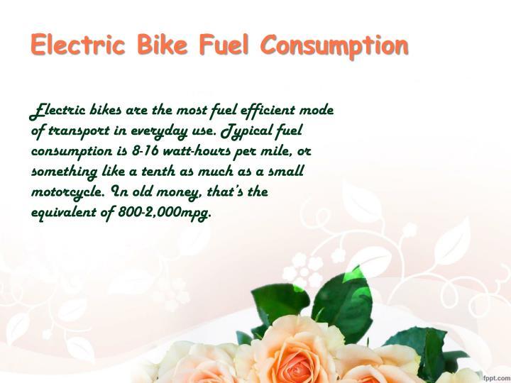 Electric Bike Fuel Consumption