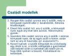csal di modellek2