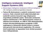 intelligens rendszerek intelligent support systems iss