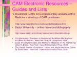 cam electronic resources guides and lists