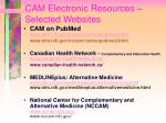 cam electronic resources selected websites