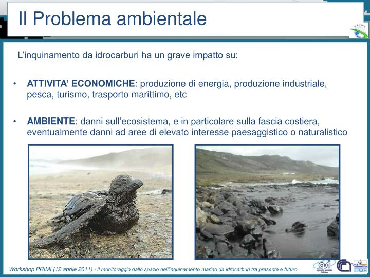 Il problema ambientale1