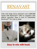 renavast1