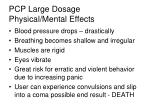 pcp large dosage physical mental effects