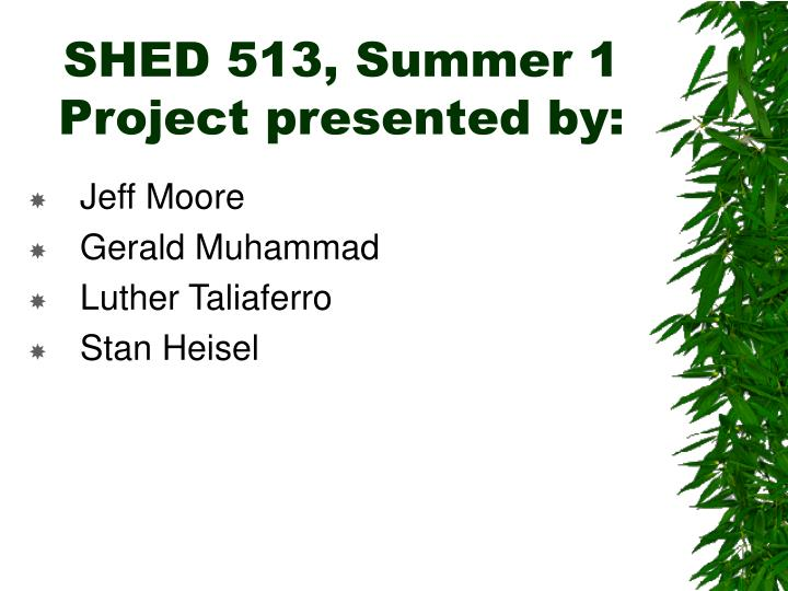 shed 513 summer 1 project presented by n.