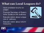 what can local leagues do