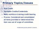 primary topics issues
