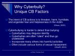 why cyberbully unique cb factors