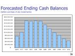 forecasted ending cash balances before purchase of any investments