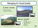 managing for visual quality