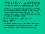 what did pl 94 142 the original special education law call for