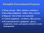 intangible environmental expenses1
