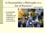 is sustainability a philosophy or a set of practices