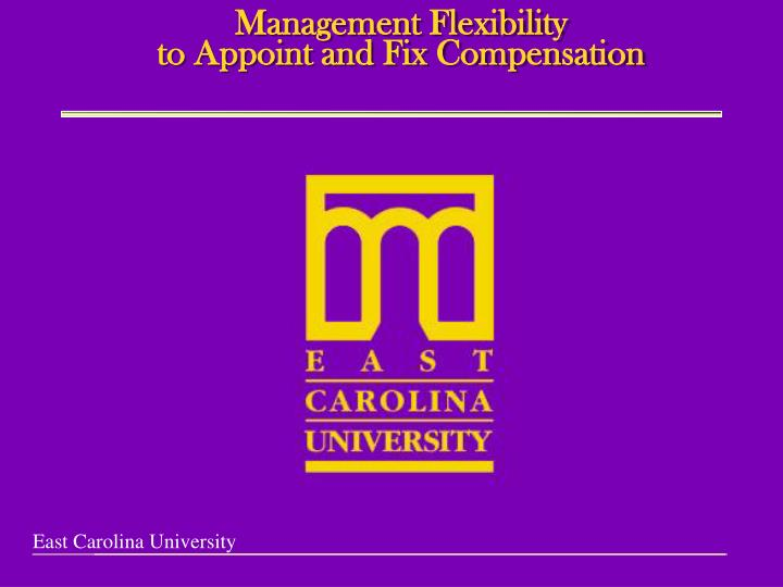 management flexibility to appoint and fix compensation n.