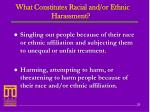 what constitutes racial and or ethnic harassment