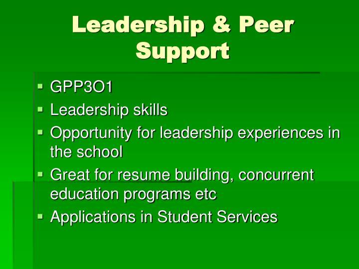 Leadership & Peer Support