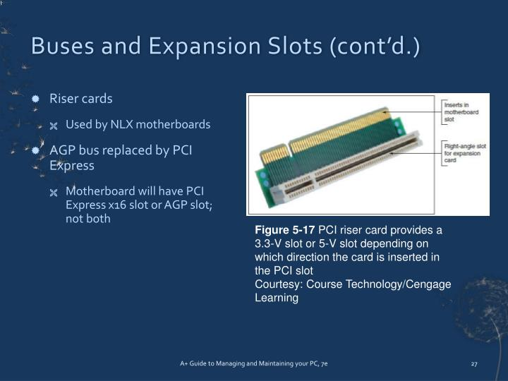 Buses and Expansion Slots (cont'd.)