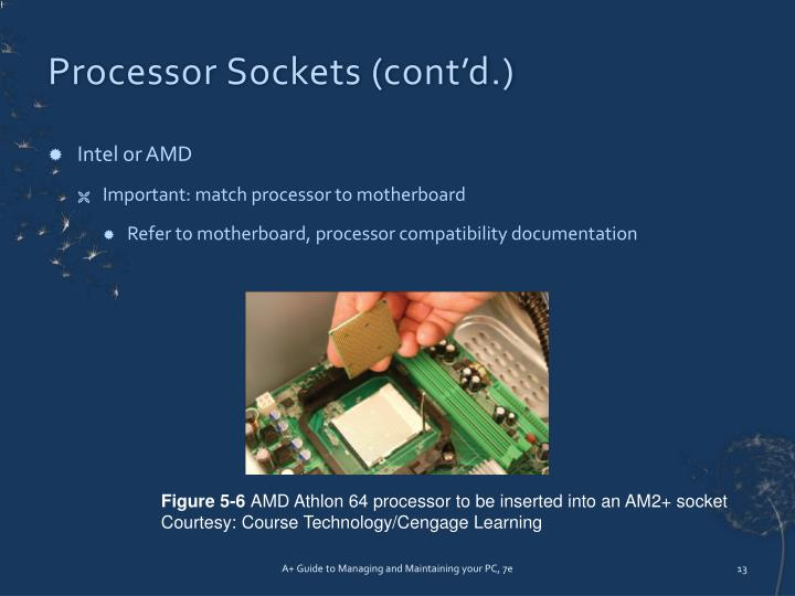 Processor Sockets (cont'd.)