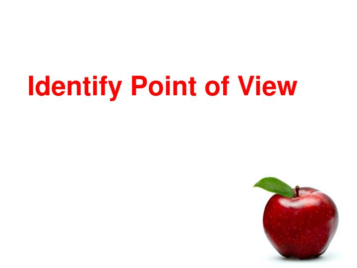 identify point of view n.
