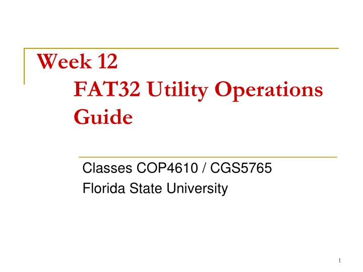 week 12 fat32 utility operations guide n.