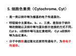5 cytochrome cyt