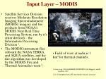 input layer modis