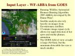 input layer wf abba from goes