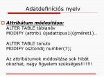 adatdefin ci s nyelv6